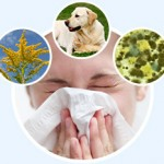 allergies-all-off